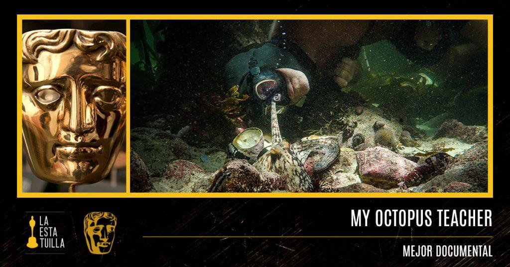 BAFTA-2021-My-Octopus-Teacher